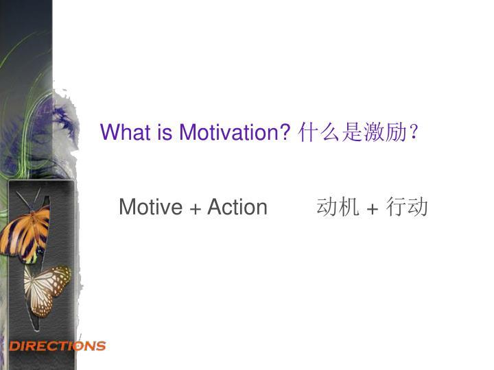 What is Motivation?什么是激励?