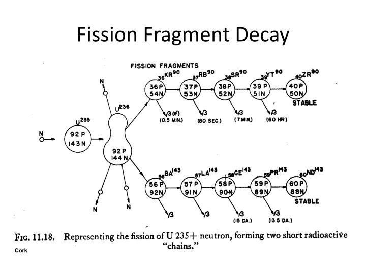 Fission Fragment Decay