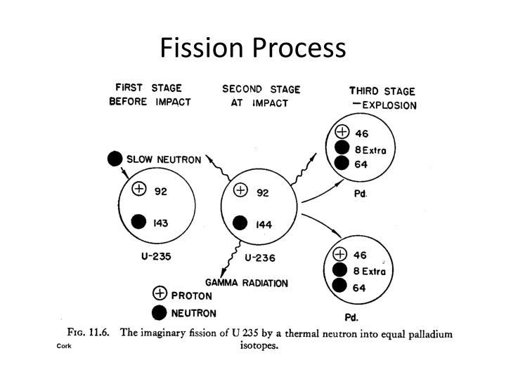 Fission Process