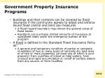 government property insurance programs1