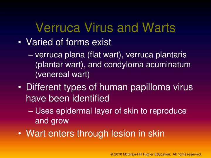 Verruca Virus and Warts
