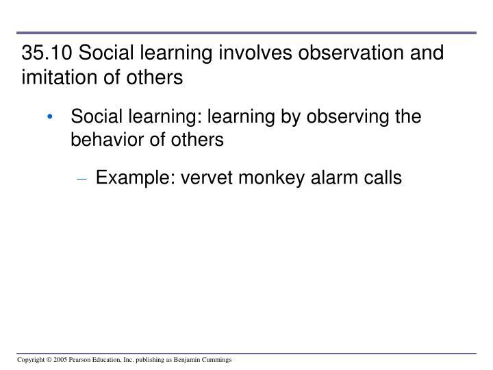 35.10 Social learning involves observation and imitation of others