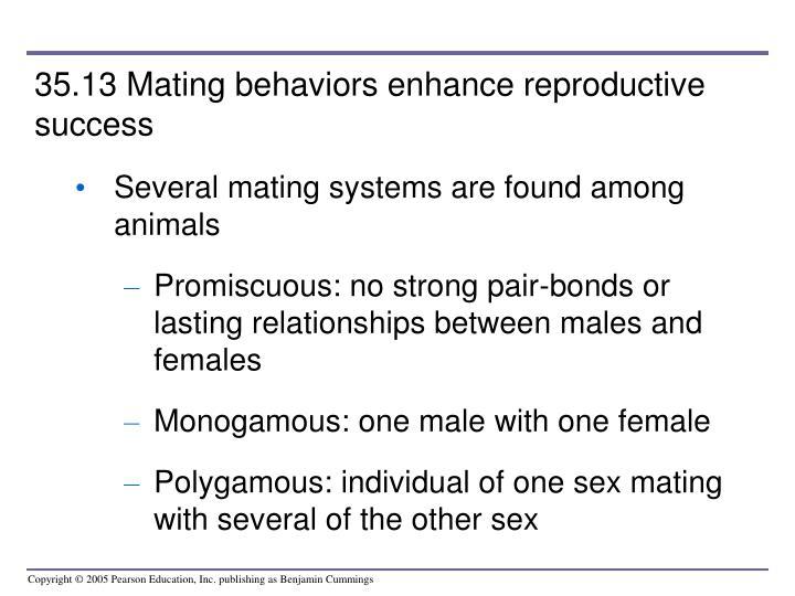 35.13 Mating behaviors enhance reproductive success