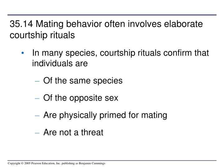 35.14 Mating behavior often involves elaborate courtship rituals