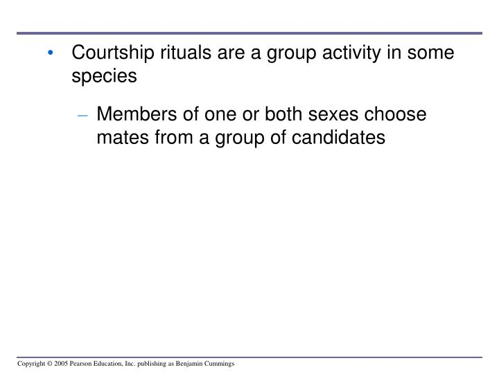 Courtship rituals are a group activity in some species