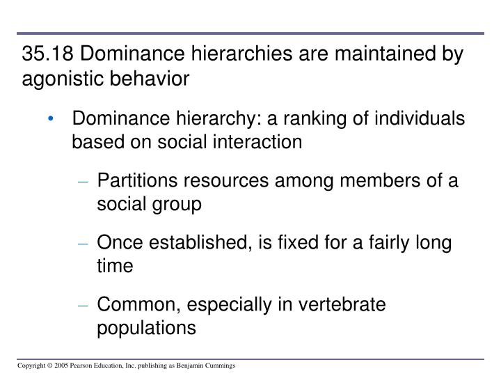 35.18 Dominance hierarchies are maintained by agonistic behavior