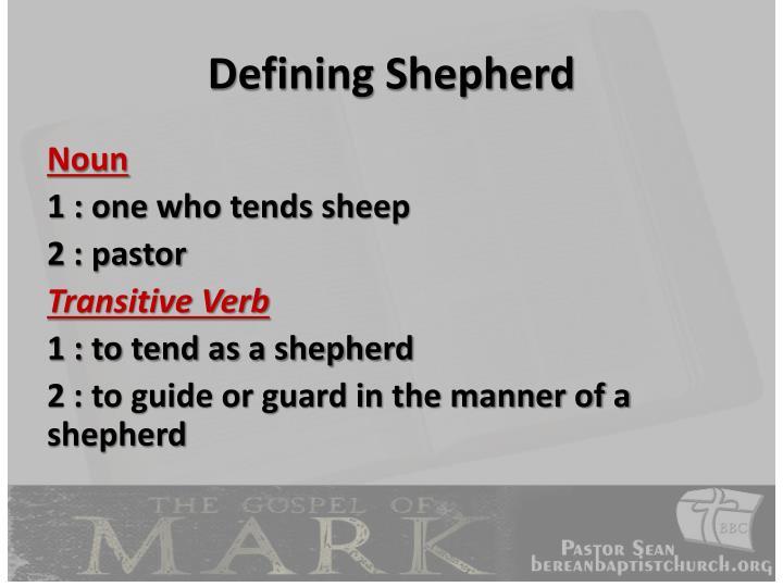 Defining Shepherd