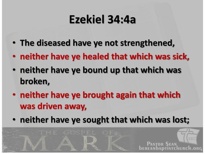 Ezekiel 34:4a