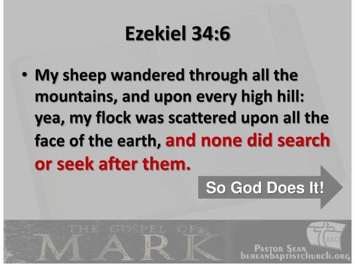 Ezekiel 34:6