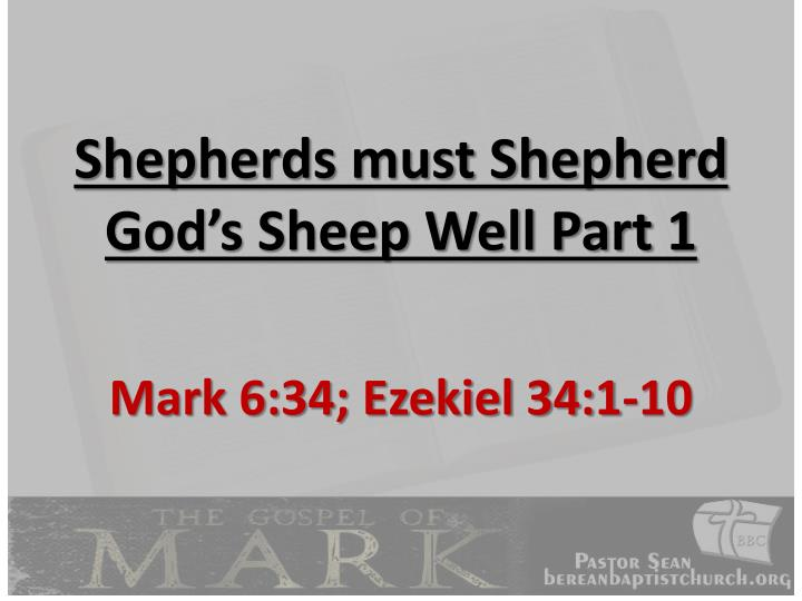 Shepherds must Shepherd God's Sheep Well Part 1