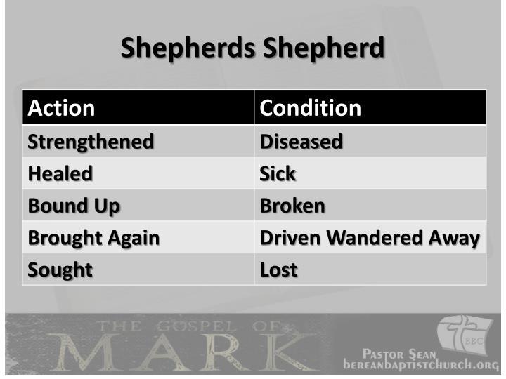 Shepherds Shepherd