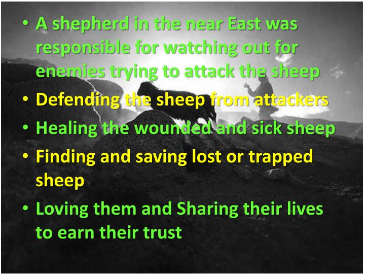 A shepherd in the near East was responsible for watching out for enemies trying to attack the sheep