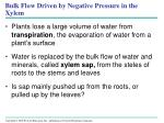 bulk flow driven by negative pressure in the xylem