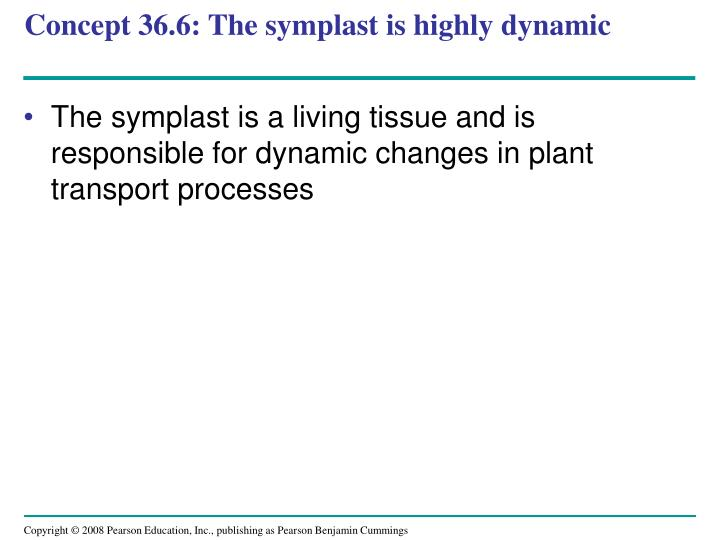 Concept 36.6: The symplast is highly dynamic