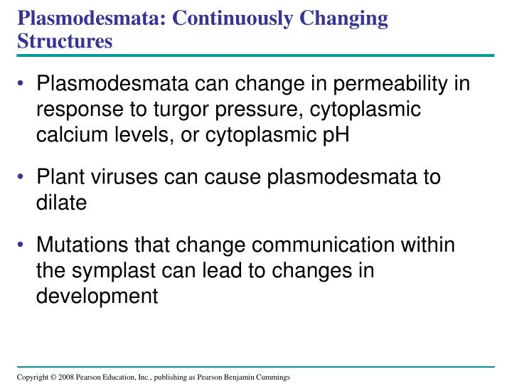 Plasmodesmata: Continuously Changing Structures