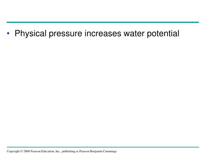 Physical pressure increases water potential