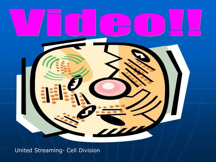 Video!!