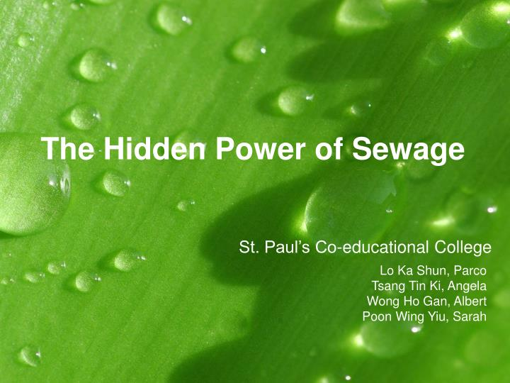 The hidden power of sewage