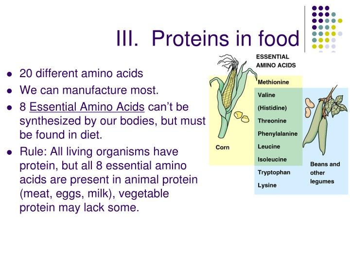 III.  Proteins in food