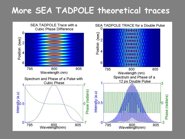 More SEA TADPOLE theoretical traces