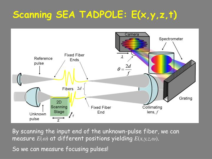 Scanning SEA TADPOLE: E(x,y,z,t)