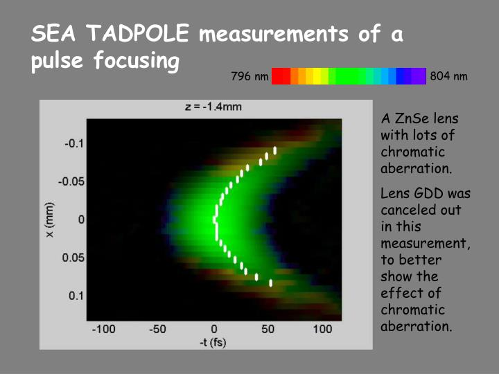 SEA TADPOLE measurements of a pulse focusing