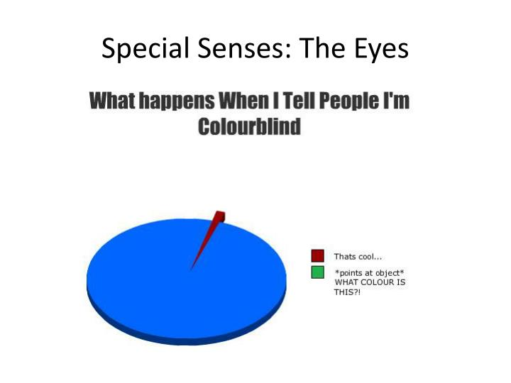 Special senses the eyes