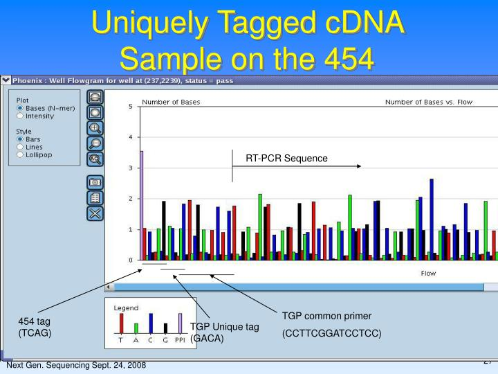RT-PCR Sequence