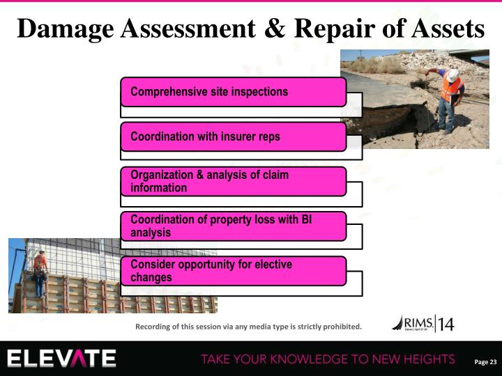 Damage Assessment & Repair of Assets
