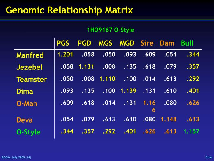 Genomic Relationship Matrix