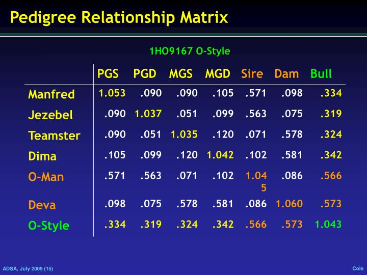 Pedigree Relationship Matrix
