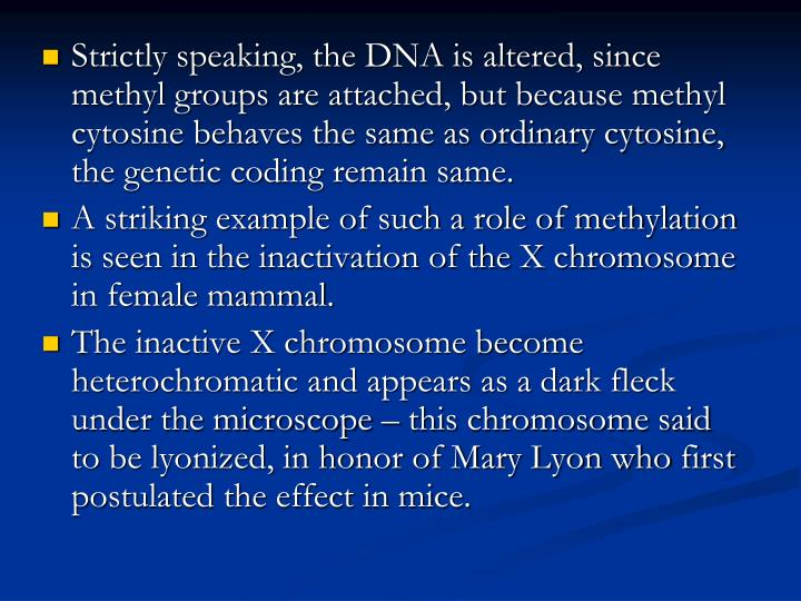 Strictly speaking, the DNA is altered, since methyl groups are attached, but because methyl cytosine behaves the same as ordinary cytosine, the genetic coding remain same.