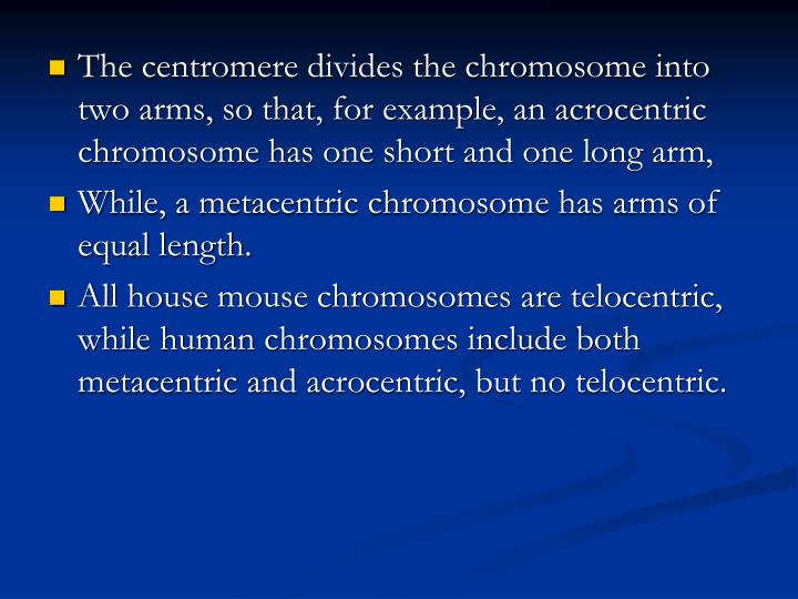 The centromere divides the chromosome into two arms, so that, for example, an acrocentric chromosome has one short and one long arm,