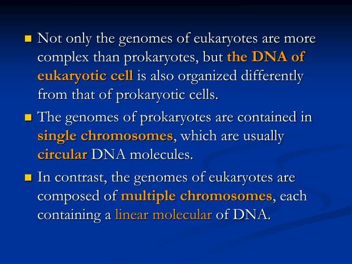 Not only the genomes of eukaryotes are more complex than prokaryotes, but
