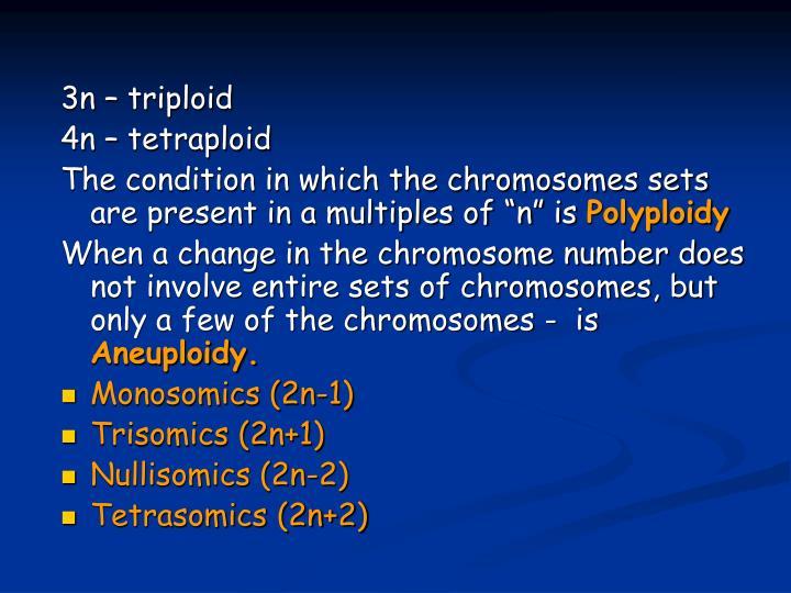 3n – triploid