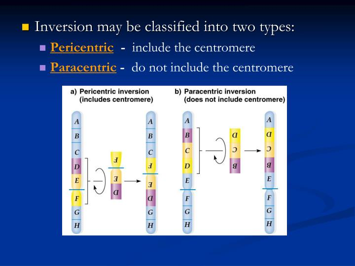Inversion may be classified into two types: