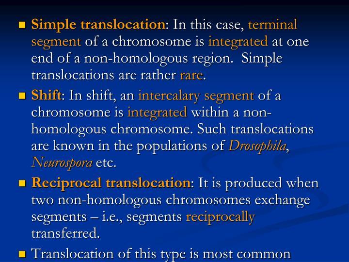Simple translocation