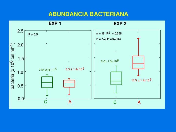 ABUNDANCIA BACTERIANA