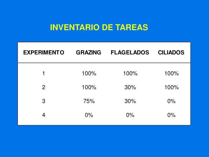 INVENTARIO DE TAREAS
