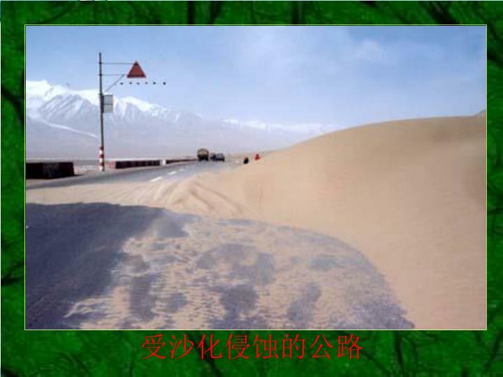 受沙化侵蚀的公路