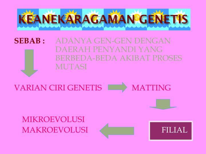 KEANEKARAGAMAN GENETIS