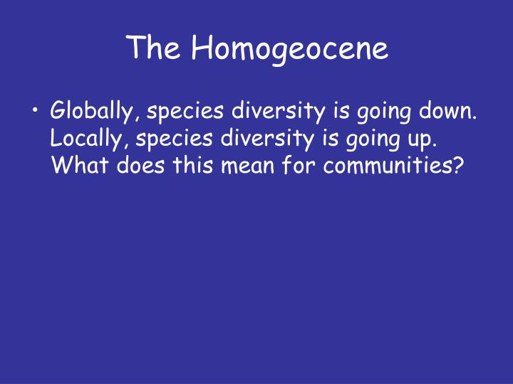The Homogeocene