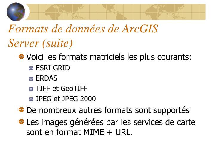 Formats de données de ArcGIS Server (suite)