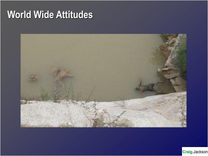 World Wide Attitudes