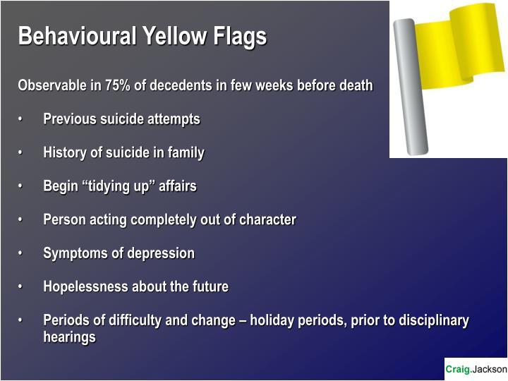 Behavioural Yellow Flags