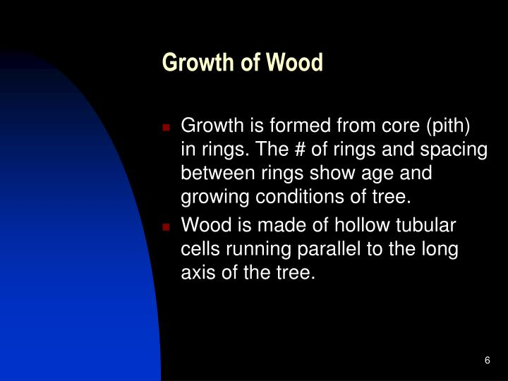 Growth of Wood