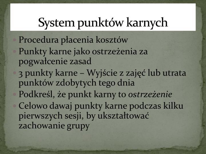 System punktów karnych