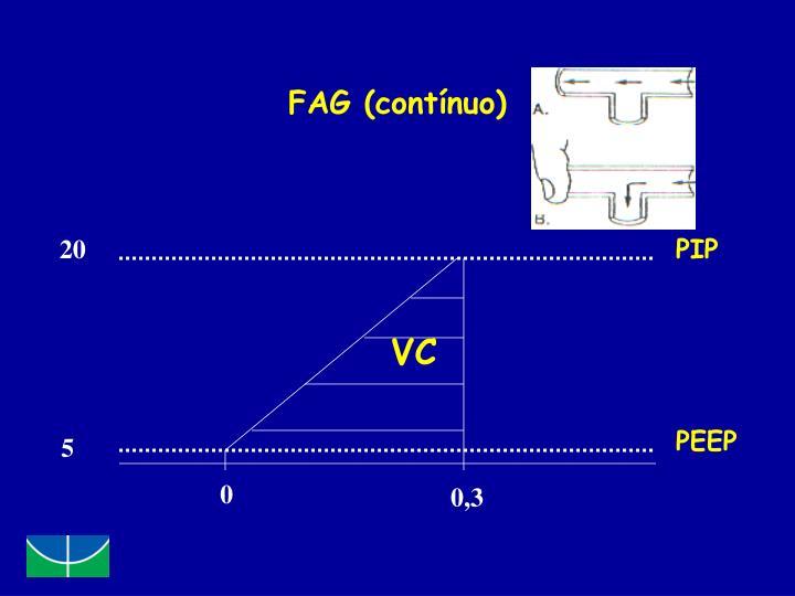 FAG (contínuo)