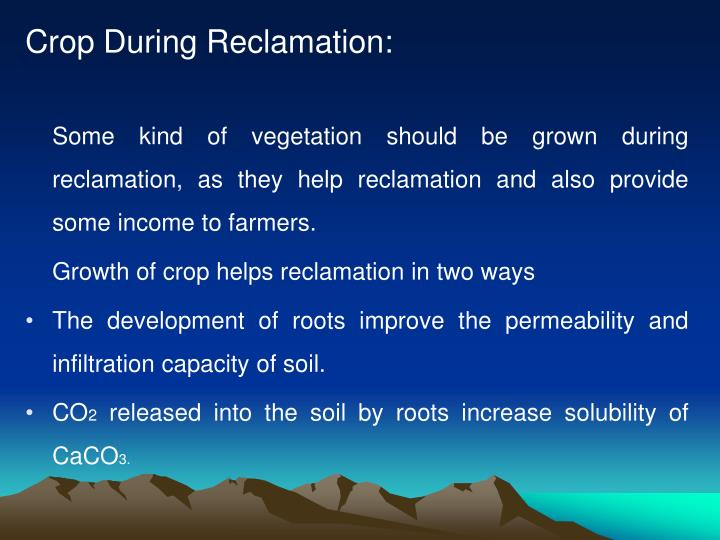 Crop During Reclamation: