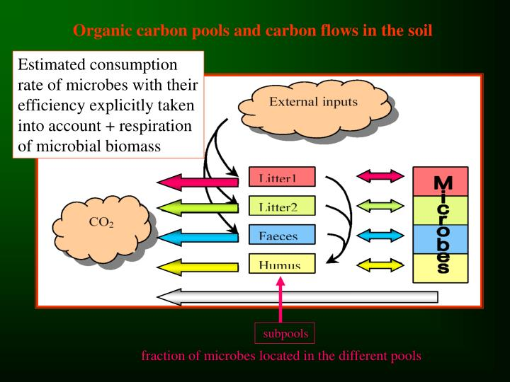 Organic carbon pools and carbon flows in the soil